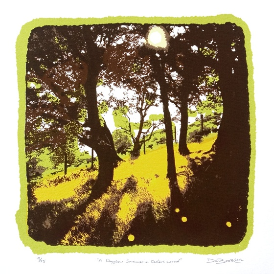 A Dayglow Summer in Owlers Wood